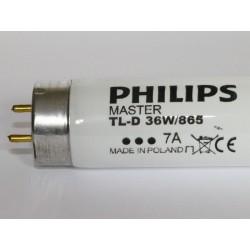 PHILIPS MASTER TL-D 36W/865