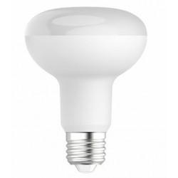 LED R80 10W/865 E27 lumière du jour